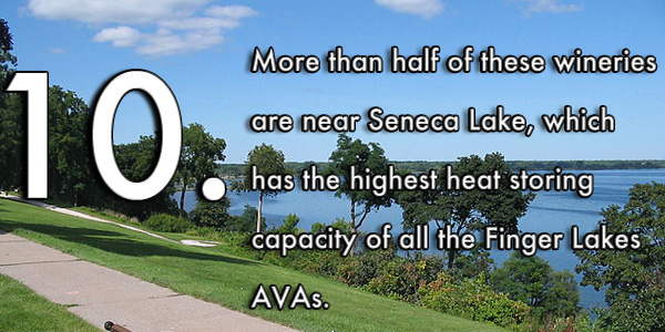 More than half of these wineries are near Seneca Lakes, which has the highest heat storing capacity of all the Finger Lakes AVAs.