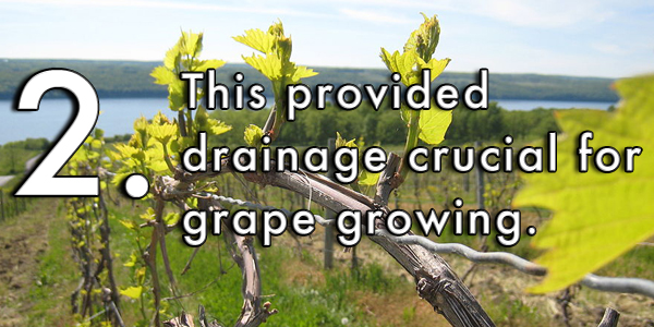 This provided drainage crucial for grape growing.