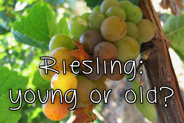 Riesling: young or old?