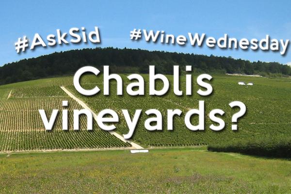 Vineyards in the Chablis wine region