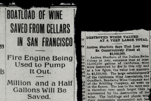 Wine articles about the earthquake
