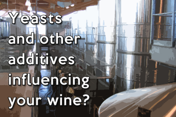 Yeasts and other additives influencing your wine?