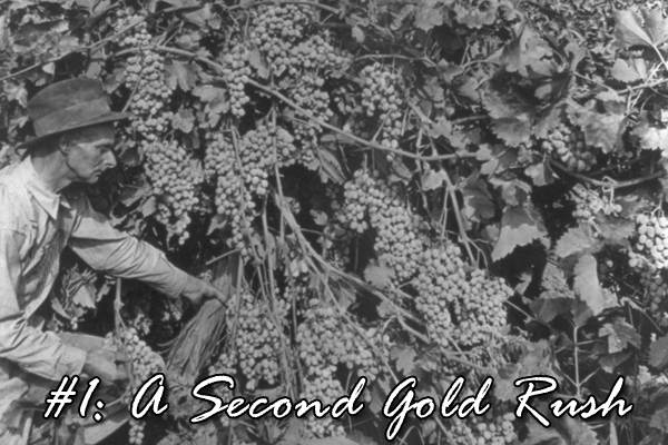 #1: A Second Gold Rush