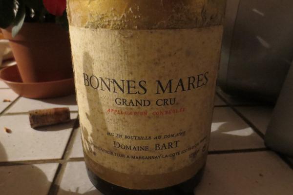 burgundy pinot noir wine