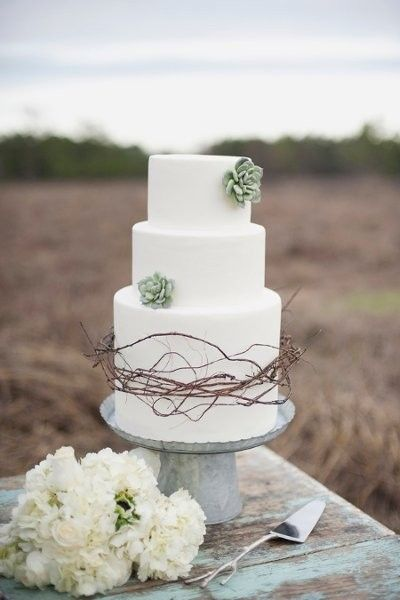 Cake at a vineyard wedding