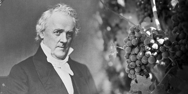 Pints are very inconvenient for James Buchanan