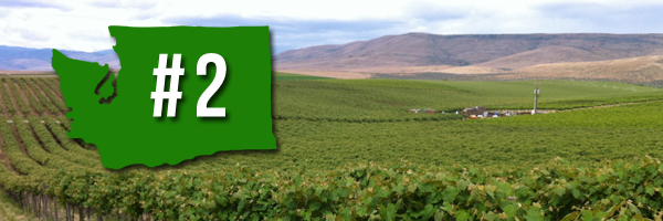 Washington State is the second largest producer of premium table wine in America