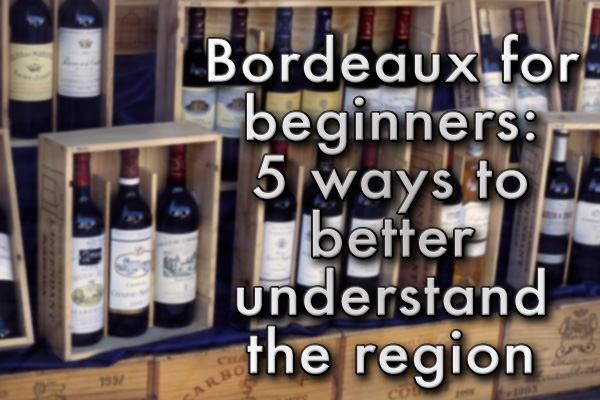 Learning about the Bordeaux wine region