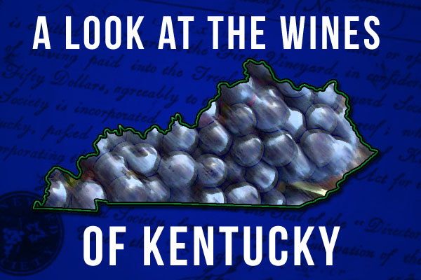 Kentucky wine