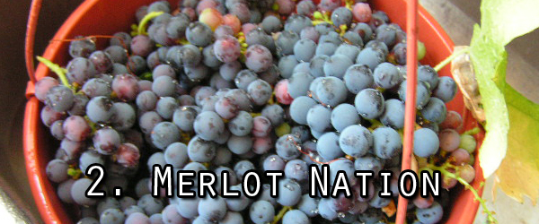 Merlot explodes in popularity during the 90s