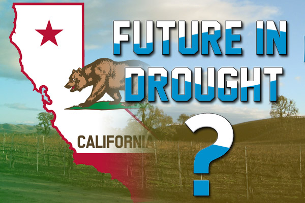 Is California's wine future in drought?