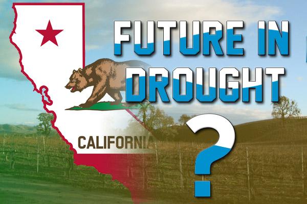 Is California's wine future in drought?
