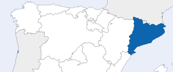 Although Cava is produced in several regions across Spain, approximately 95% of it comes from the region of Catalonia.