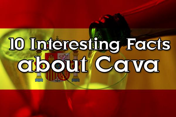 Cava sparkling wine facts