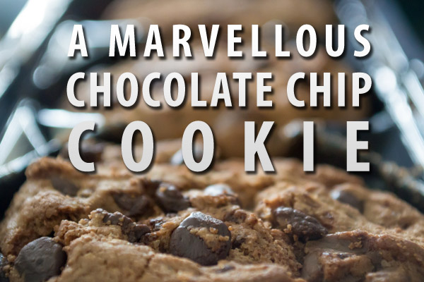 A Marvellous Chocolate Chip Cookie