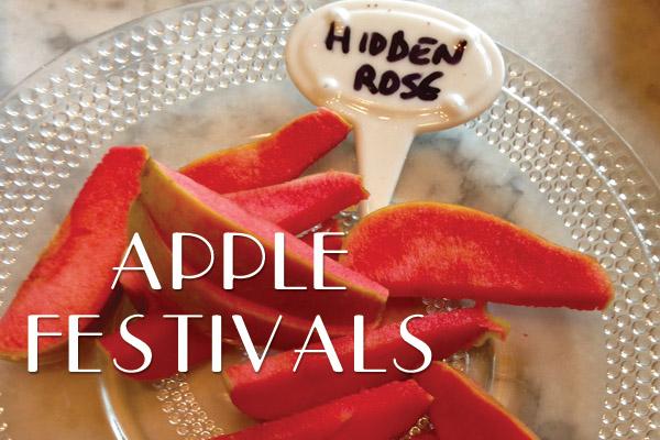 Apple Festivals Hidden Rose