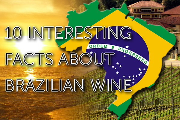 10 interesting facts about Brazilian wine