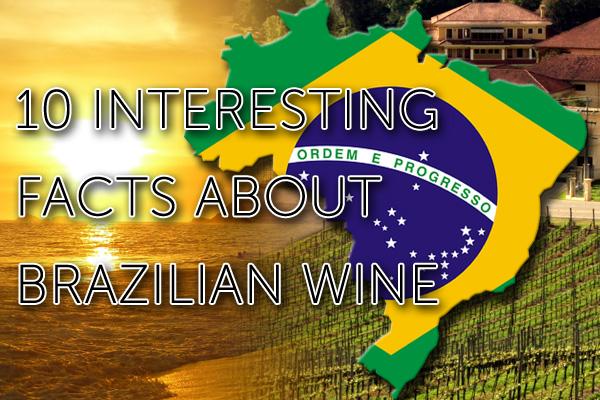10 interesting facts about Brazilian wine