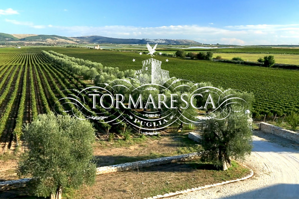 Tormaresca in Puglia Italy
