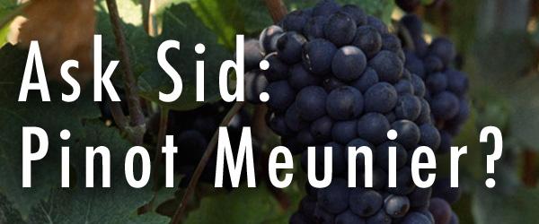 Pinot Meunier grape champagne