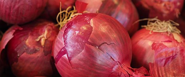 red onion jam chutney jelly