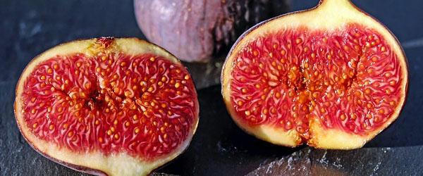 fig port preservative jam jelly chutney