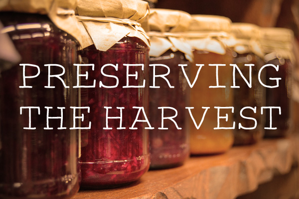 preserves jams chutneys