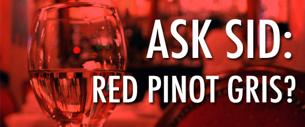 Ask Sid: Red Pinot Gris?