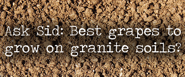 what are the best grapes to grow on granite soils?