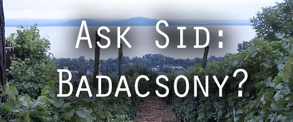 Badacsony wine region hungary