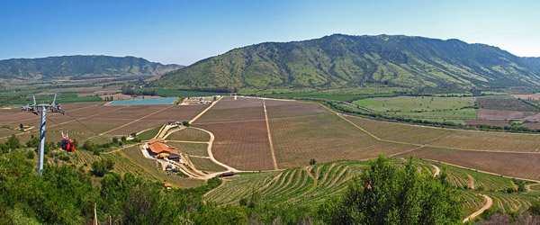 growing conditions for Chilean wine