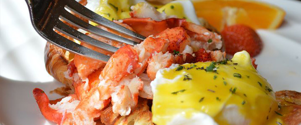 Lobster hollandaise brunch