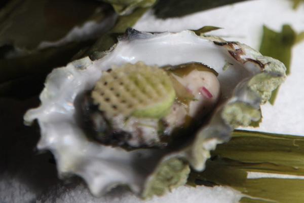 BC Shellfish & Seafood Festival