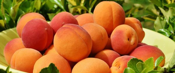 Apricot Chardonnay