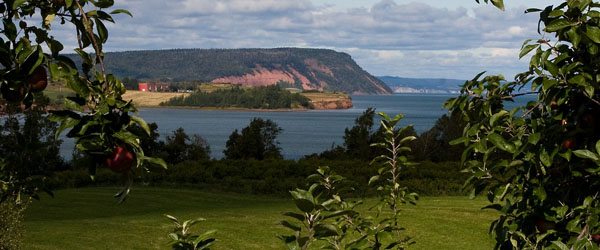 climate for winemaking in Nova Scotia