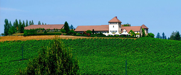 vineyard and wineries in oregon