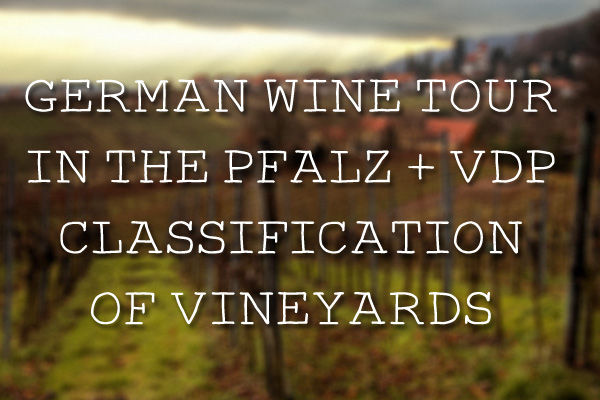 German Wine Tour in the Pfalz + VDP Classification of Vineyards
