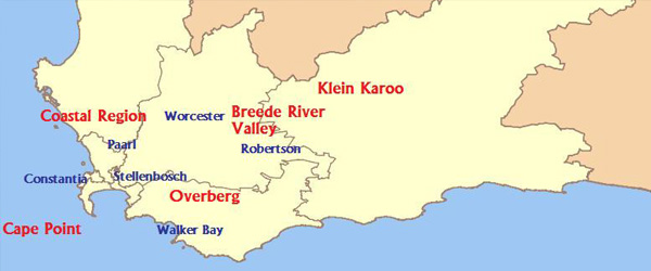 wine Coastal Region Western Cape