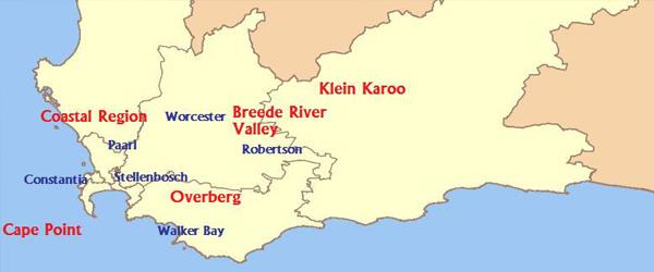 wine Coastal Region Western Cape