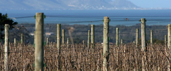 5 wine zones geography south african wine