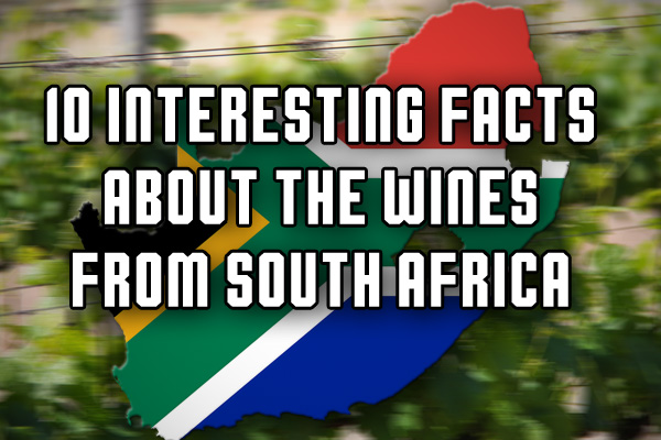South African wine facts