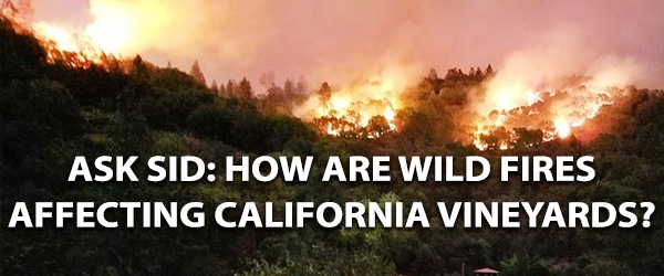 California wildfires wine grapes