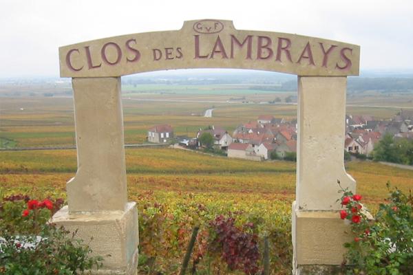 Clos de Lambrays burgundy wine tasting