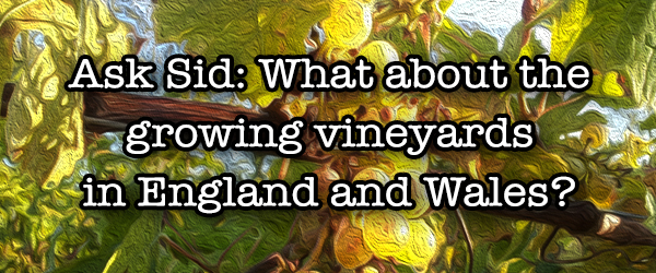 Ask Sid: What about the growing vineyards in England and Wales?