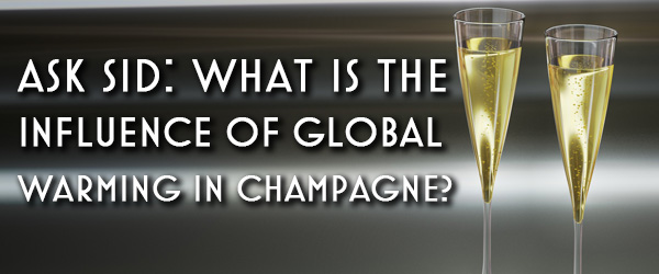 Ask Sid: What is the Influence of Global Warming in Champagne?