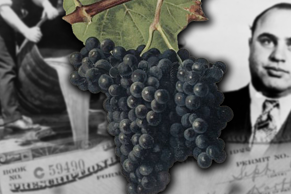 Alicante Bouschet grape wine