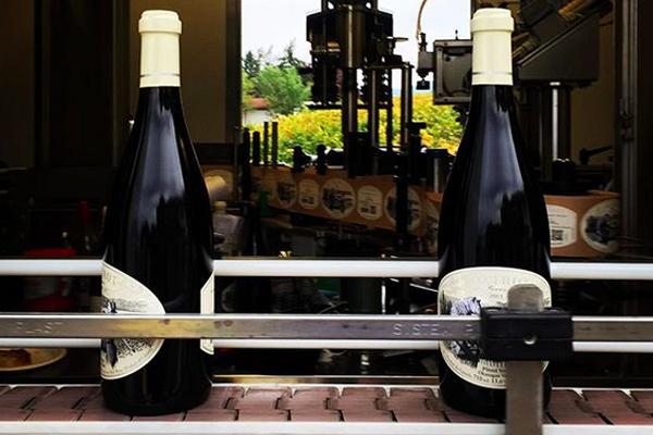 foxtrot wine british columbia pinot noir
