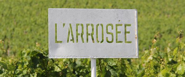 chateau l'arrosee bordeaux wine