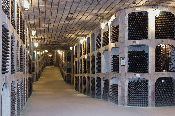world's biggest wine cellar